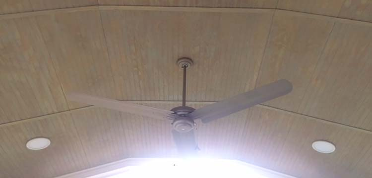 Ceiling fan in Screened Porch